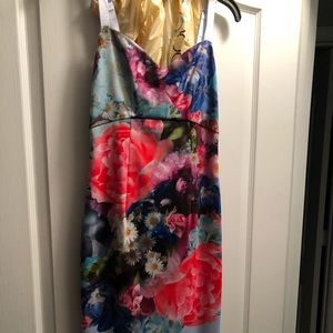Ted Baker NWT floral dress size 1